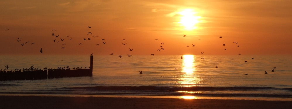 Renesse zonsondergang