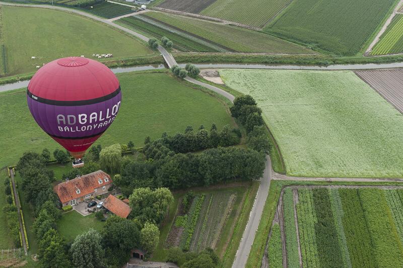 de zwaan ad ballon