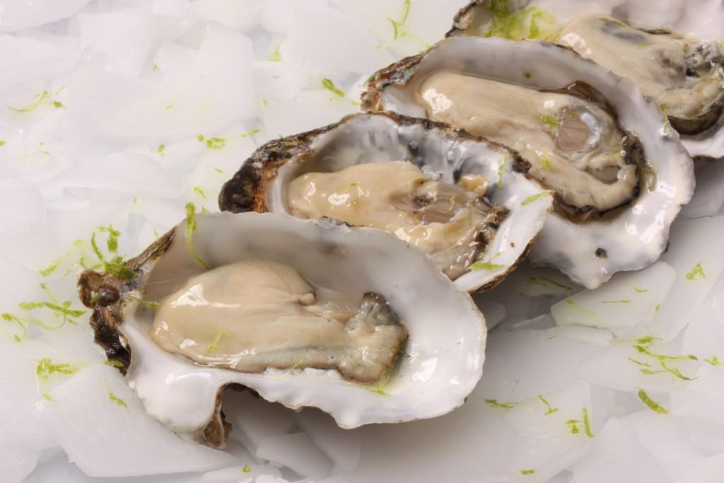 de vierbannen oesters